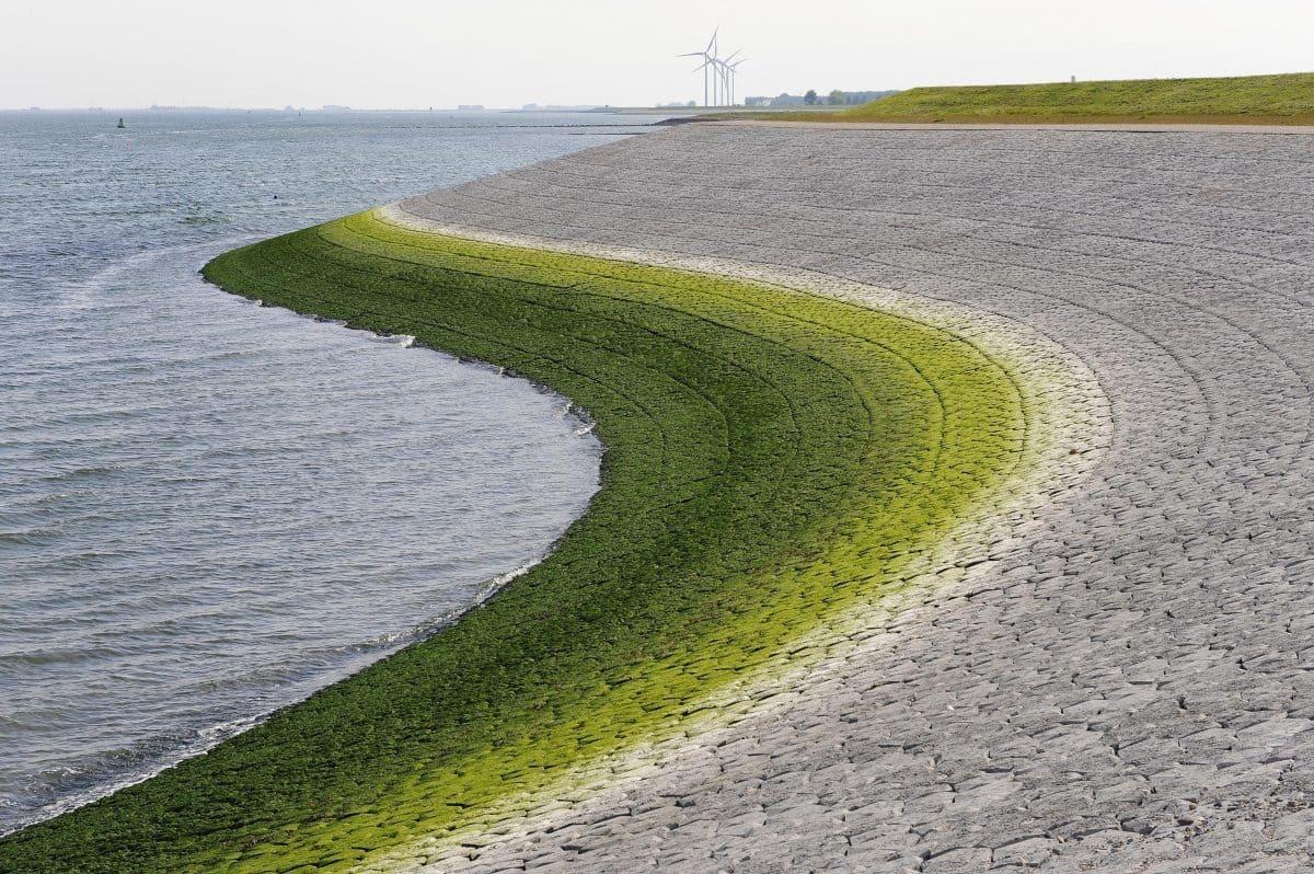 Die Basalton®-Betonsäulen werden dort eingesetzt, wo die Wellen zu hoch sind oder die Strömung zu stark ist.